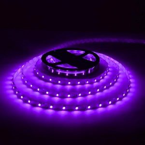 Лед Лента 4,8W/m Пурпур